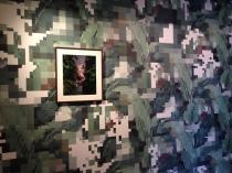 minaya wallpaper1